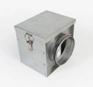 sop-resize-400-חיה
