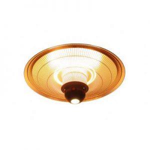 sop-resize-400-ZHQ2125-RMLED LED light